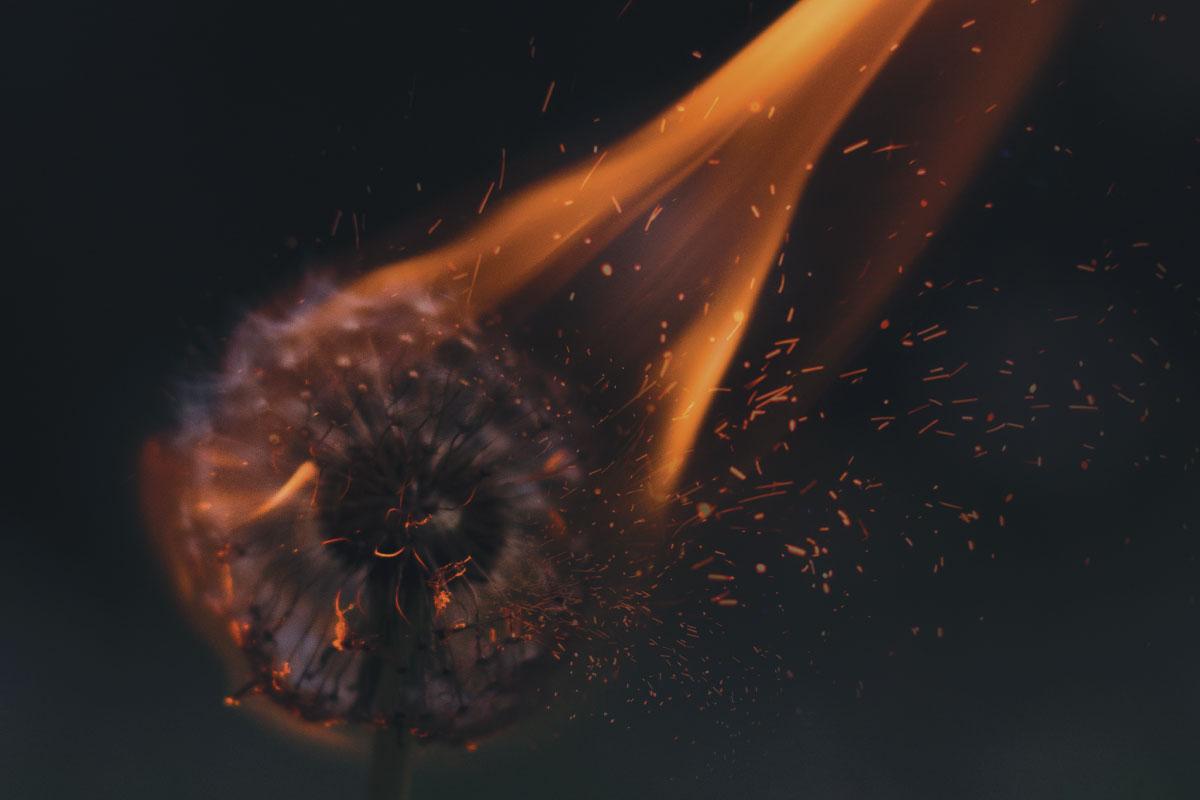 Church Planter on Fire