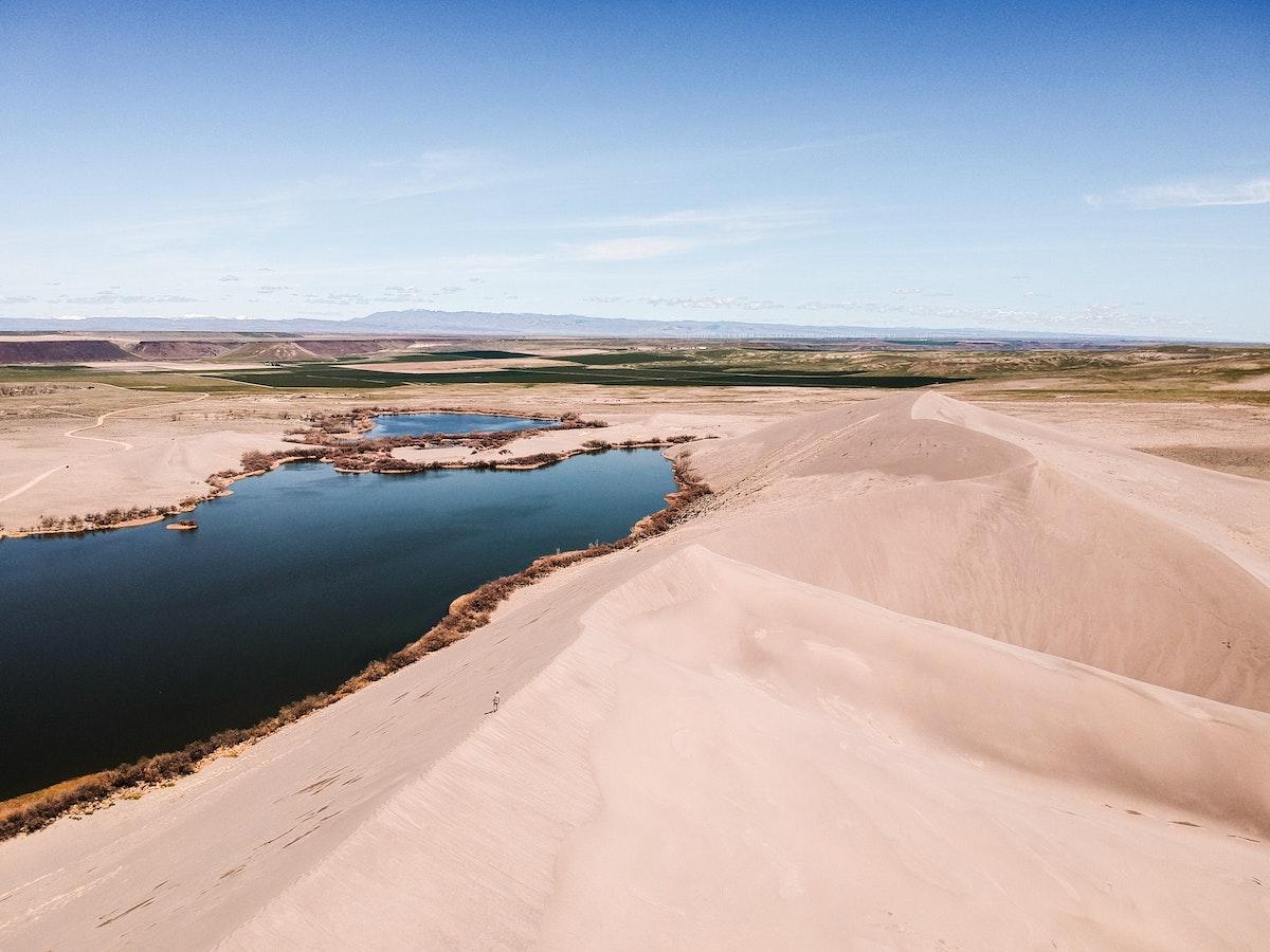Spring in the Desert by Jeremy Bishop on Unsplash