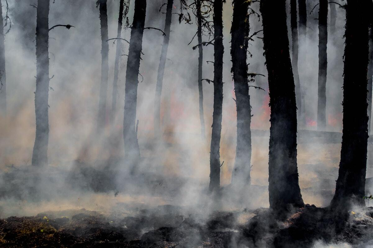 Wildfires, Hospitality, and a Local Church