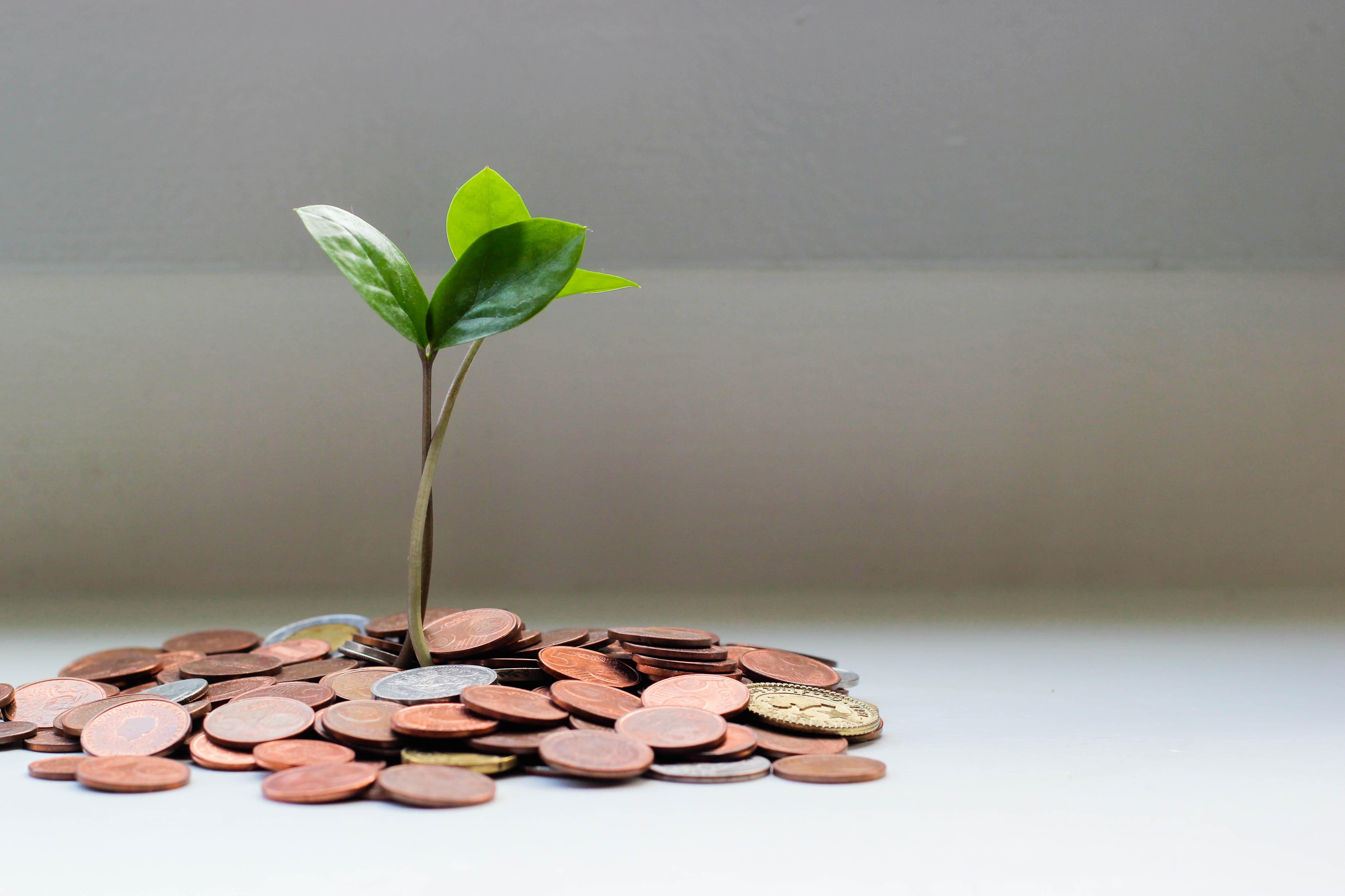 The Three «C's» of Fundraising
