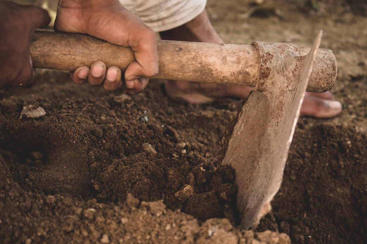 Ploughing, Plodding, and Revival
